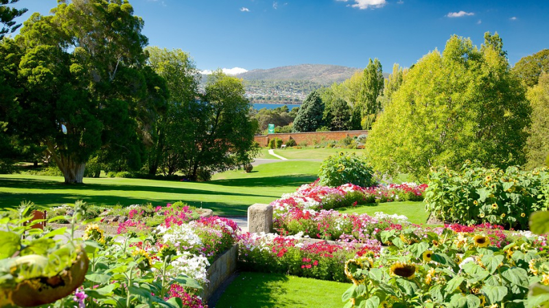 Royal-Tasmanian-Botanical-Gardens